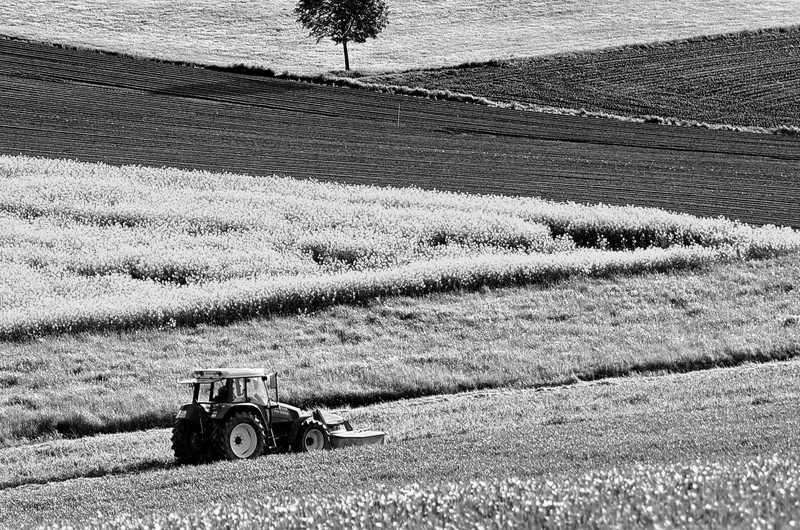 bureau d etude agriculture
