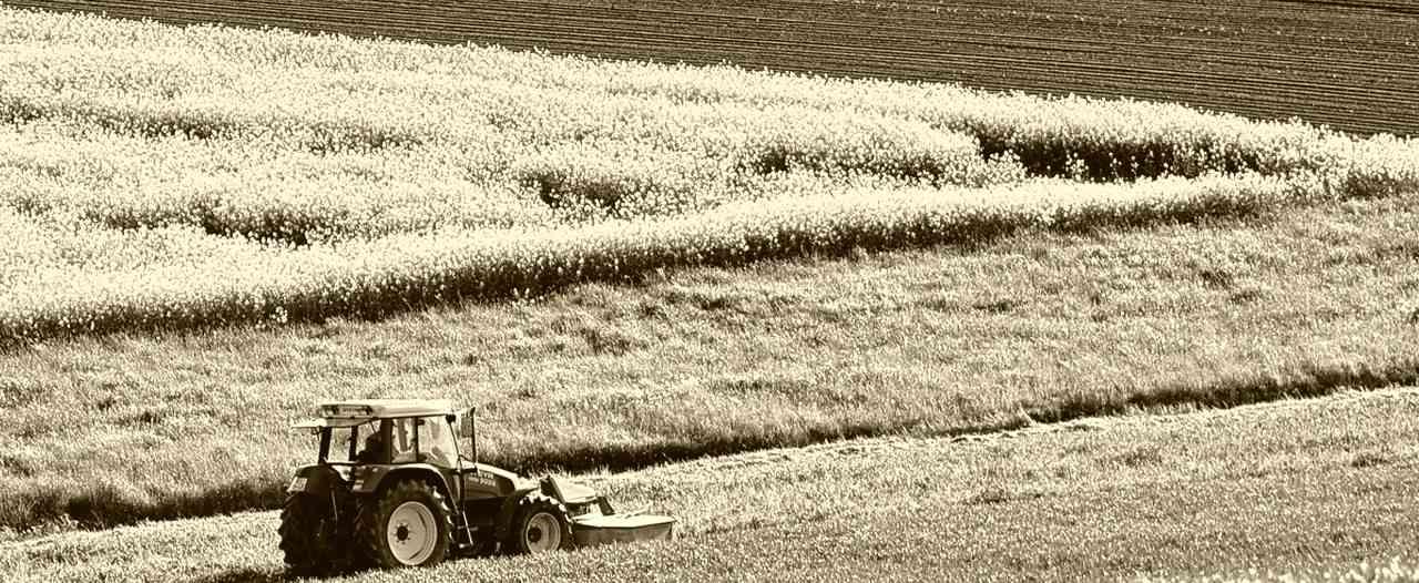bureau d étude agriculture